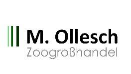 M.Ollesch
